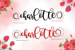 Something Cherish - Quirky Calligraphy Script Product Image 2
