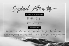 Sigduel   Signature Font Product Image 2