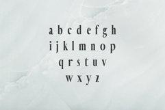 Hadwin Serif Typeface Product Image 3