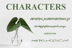 Aleena Handlettering Font Product Image 4