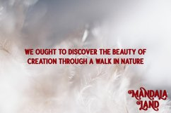 Winter Hunt Beauty Typeface Product Image 5