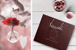 Birdy Roses | Script font and Swashes Product Image 3