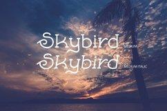 Skybird Family - Crazy, unique & retro Product Image 4