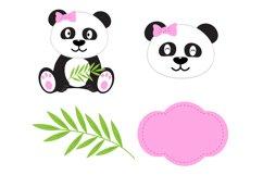 Panda Digital Paper, panda Boy Background, Animals. Product Image 4