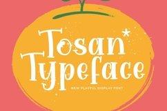 Web Font Tosan Product Image 1