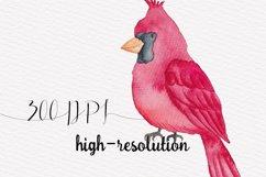 Cute Birds Watercolor Set Product Image 2