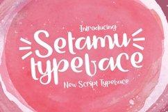 Web Font Setamu Product Image 1