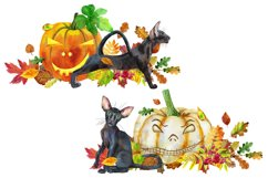 Halloween black cats and pumpkins Product Image 2