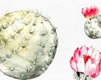 Watercolor cactus clipart, Cute cactus png. Love cactus Product Image 4