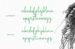 Ecaliptycus Script Font Product Image 4