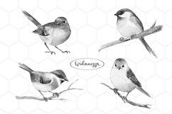 Birds. Watercolor set Product Image 1