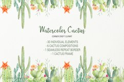 Watercolor clipart cactus for instant download  Product Image 6