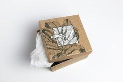 Premium Botanical Illustrations - Plants Product Image 3