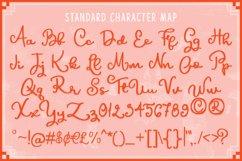 HiGirls Script Product Image 2