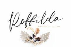 Web Font Roffilda - Script Font Product Image 1