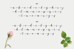 Wendling - Beautiful Script Product Image 3