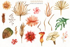Savanna dried flowers and leaves Watercolor Product Image 9