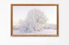 Snow Tree - Wall Art - Digital Print Product Image 4