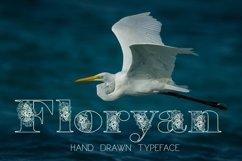 Floryan Font Product Image 1
