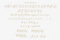 Swadery - Luxury Font Product Image 5