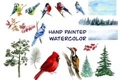 Forest birds watercolor clipart, Red cardinal. Product Image 3