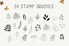 Hand Drawn Leaves Procreate Stamp Brushes Product Image 2