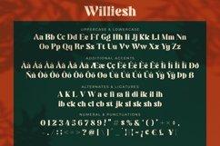 Williesh Product Image 5