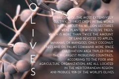 Oliwe Product Image 6