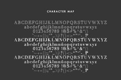 A Trio of Handwritten Serifs Product Image 2
