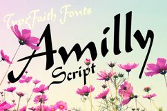 Amilly Script Product Image 5