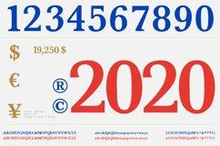 ANIMUS - Serif font family Product Image 3
