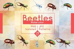 Beetles JPG watercolor set  Product Image 1