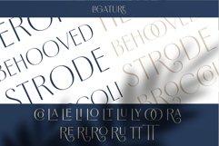 Borest - Elegant Roman Sans Serif Product Image 6
