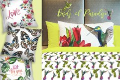 Birds of Paradise JPG watercolor set Product Image 3