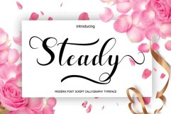 Steady Product Image 1