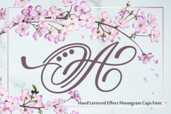 Hand Lettered Effect Monogram Product Image 1