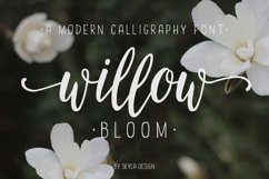 Modern calligraphy font Willow Bloom Product Image 1