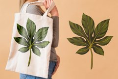 Hand drawn tropical leaves bundle Product Image 4
