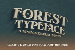 Forest - Display Font Product Image 3