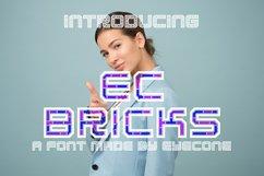 EC Bricks Product Image 1