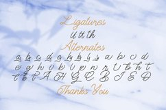 The Gallery - Monoline Script Font Product Image 4