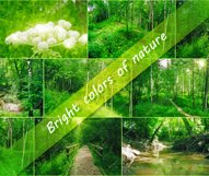 7 Photos of nature Product Image 1