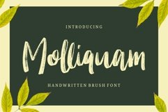 Molliquam Product Image 1