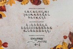 Web Font Amerisune Font Product Image 4