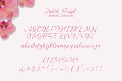 Orchid Script Product Image 5