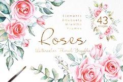 Pink Roses Watercolor Bundle Product Image 1