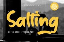 Salting Product Image 1