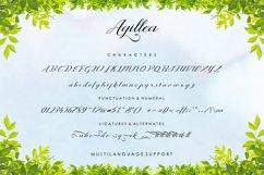 Agillea Script Product Image 6