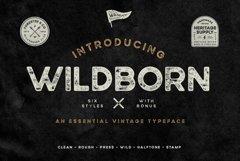 Wildborn Vintage Sans Product Image 1