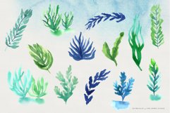 Ocean Life Watercolor Illustrations Product Image 8